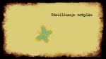 Stabilizaccja motylka - M. Szulc